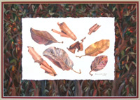 Madrone Bark and Leaves